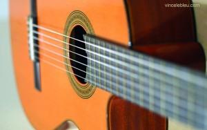 guitaresèche